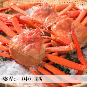 香住がに ベニズワイガニ 姿蟹 ボイル 500g×3匹 中松商店|arumama