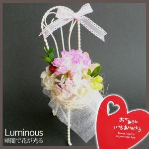 カーネーション ピンク|arumama