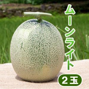 ムーンライト メロン 2玉 高糖度 農薬不使用 送料無料 arumama