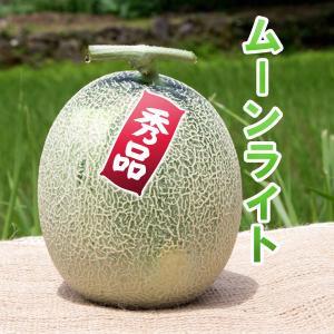 ムーンライト メロン 秀品 1玉 高糖度 農薬不使用 送料無料 arumama