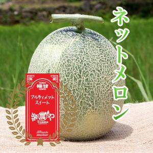 ムーンライト メロン 極甘 1玉 高糖度 農薬不使用 送料無料 arumama