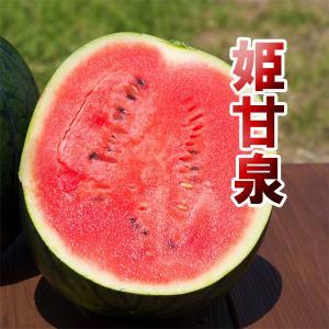 姫甘泉ブラック 小玉 スイカ 農薬不使用 黒い すいか 送料無料 arumama