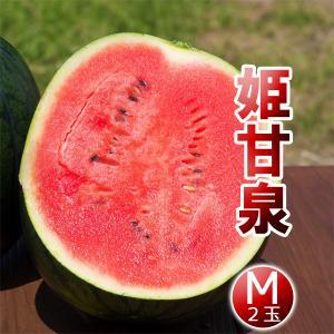 高糖度 小玉 スイカ 姫甘泉ブラック(M:2玉セット)農薬不使用 すいか 送料無料|arumama