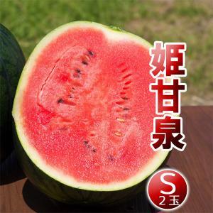 高糖度 小玉 スイカ 姫甘泉ブラック(S:2玉セット)農薬不使用 すいか 送料無料|arumama