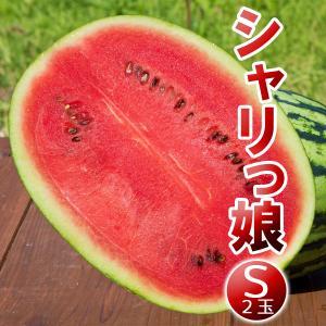 高糖度 小玉 スイカ シャリっ娘(S:2玉セット)農薬不使用 すいか 送料無料|arumama