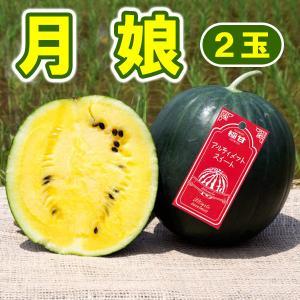 月娘 極甘(2玉)小玉 スイカ 農薬不使用 黄色い すいか 送料無料 arumama