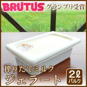業務用アイスクリーム 業務用アイス(2L バルク)|arumama