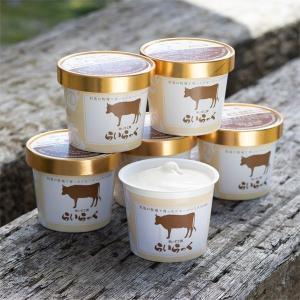 アイス ギフト アイスクリーム 24個|arumama