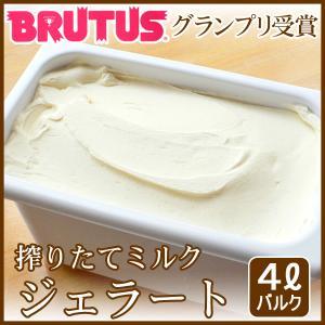 業務用アイスクリーム 業務用アイス(4L バルク)|arumama