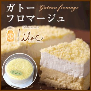 お試し スイーツ チーズケーキ ガトーフロマージュ 送料無料|arumama