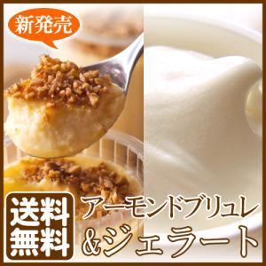 お中元 アイス&プリン|arumama