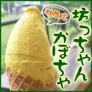 坊っちゃんかぼちゃ ジェラート アイス|arumama