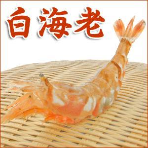 訳あり わけあり 不ぞろい【しろえび】白海老(大・中)500g!お刺身OK【シロエビ】|arumama