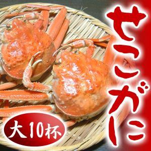 せこがに せいこがに せいこ蟹 セコ蟹(大)10杯 カニ かに 蟹 兵庫県 香住・柴山産 送料無料|arumama
