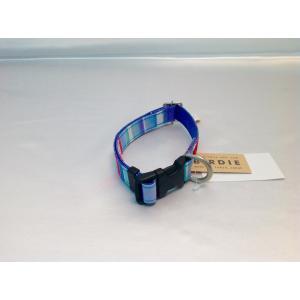 マルチボーダーカラー M [ブルー]|arumik-one