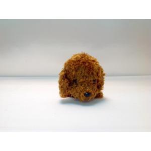 プレミアムパピー ペンケース 48060 トイプードル|arumik-one