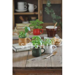 ヴェルデカフェ ミニマグで育てるハーブ栽培セット 聖新陶芸|arune