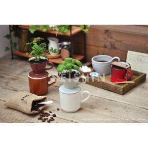 ヴェルデカフェ ドリッパープラス ドリッパーで育てるハーブ栽培セット 聖新陶芸 arune