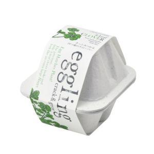 聖新陶芸 エッグリング エコフレンドリー 四つ葉のクローバー 四つ葉のクローバー 植物 グリーン 栽培セット ガーデニング プチプラ ギフト 景品 プレゼント|arune