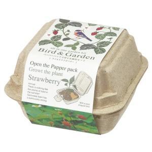 バード&ガーデン ワイルドストロベリー栽培セット 再生紙紙パックで育てるハーブ栽培キット 観葉植物 ...