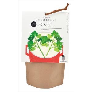 育てるスープ パクチー 観葉植物 ガーデニング 聖新陶芸 ギフト プレゼント 景品 arune