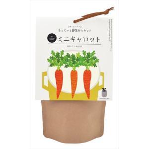 育てるスープ ミニキャロット 観葉植物 ガーデニング 聖新陶芸 ギフト プレゼント 景品 arune