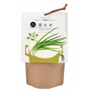 育てるスープ 青ネギ 観葉植物 ガーデニング 聖新陶芸 ギフト プレゼント 景品 arune