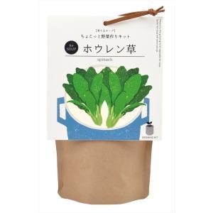 育てるスープ ホウレンソウ 観葉植物 ガーデニング 聖新陶芸 ギフト プレゼント 景品 arune