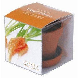 ギフトタイニィタイニィプラント TinyTiny Plant ミニキャロット 栽培セット・野菜・ハーブ|arune