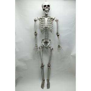 等身大骸骨 ハロウィン 飾り arune