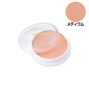 三善 グリースペイント 8g メディウム MY5-010296 arune