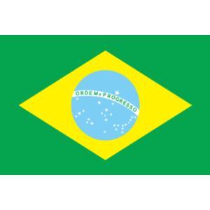 ブラジル代表 応援 ブラジル国旗 卓上旗サイズ 16×24cm 高級テトロン製 サッカー 応援 鳴り物 ペイント かぶりもの|arune