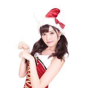 にゃん2サンタ帽 クリスマス サンタクロース 衣装 コスチューム Xmas コスプレ プチプラ|arune