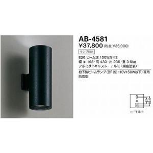 山田照明 AB-4581 arupark
