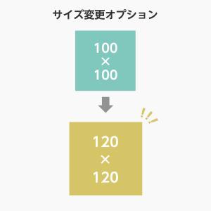 【オプション】サイズ変更 100サイズから120サイズ 単品購入不可|arutesuta