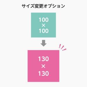 【オプション】サイズ変更 100サイズから130サイズ 単品購入不可|arutesuta