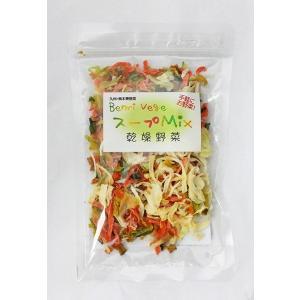 乾燥野菜 ベンリベジ スープMIX 40g