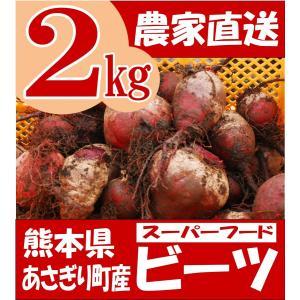 有機栽培 ビーツ 2kg 熊本県産 野菜 栄養 予約販売