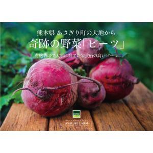 有機栽培 ビーツ 2kg 熊本県産 野菜 栄養 予約販売|asagiri-nouen|06