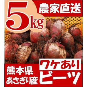 ワケあり 有機栽培 ビーツ 5kg 熊本県産 野菜 栄養 特価 予約販売