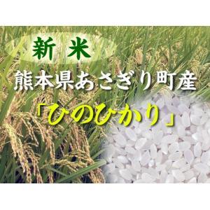 米 ひのひかり 白米 10kg (平成28年産) 熊本県あさぎり町産 新米 28年産 安い