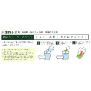スムージー 野菜 くまもとスムージー グリーン レギュラーサイズ スティック14包|asagiri-nouen|03