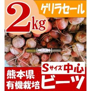 熊本県産 有機栽培ビーツ 2kg (わけありSサイズ中心)