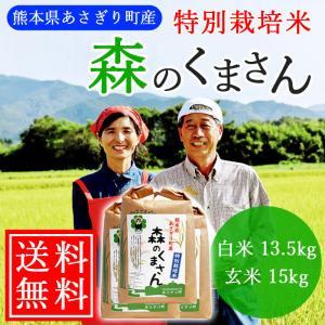 【送料無料】令和2年産 特別栽培米 森のくまさん 白米13.5kg(玄米15kg) 熊本県産【農薬不使用】【化学肥料不使用】|asagiribussankan