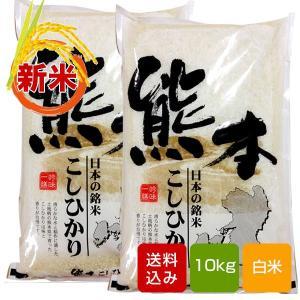 米 10kg    熊本県産 こしひかり 白米 一等米 コシヒカリ