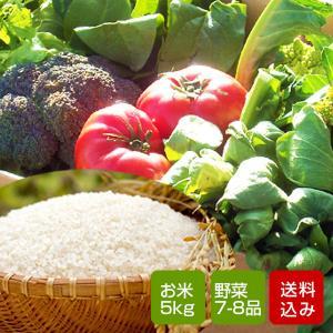 野菜とお米のセット 野菜詰め合わせ 九州 西日本 野菜 送料無料