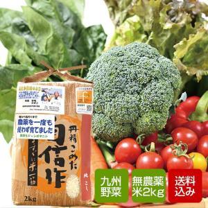 野菜と無農薬コシヒカリ2kgセット 野菜詰め合わせ 九州野菜 お中元 ギフト クール便
