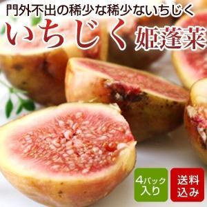 イチジク 姫蓬莱 4パック入 特別栽培 無花果 いちじく ひめほうらい 福岡産
