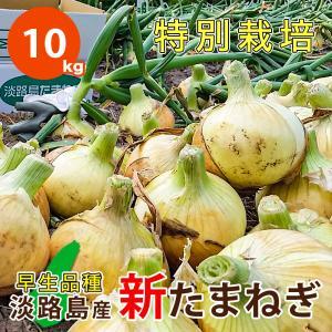 10キロ 淡路島産 新たまねぎ 減農薬 特別栽培 有機肥料使用 早生品種 ★数量限定★|asahi-onion-awaji