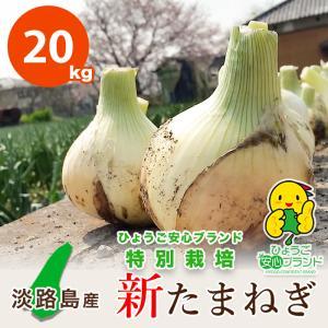 20キロ 淡路島産 新たまねぎ 減農薬 特別栽培 有機肥料使用 ★数量限定★|asahi-onion-awaji